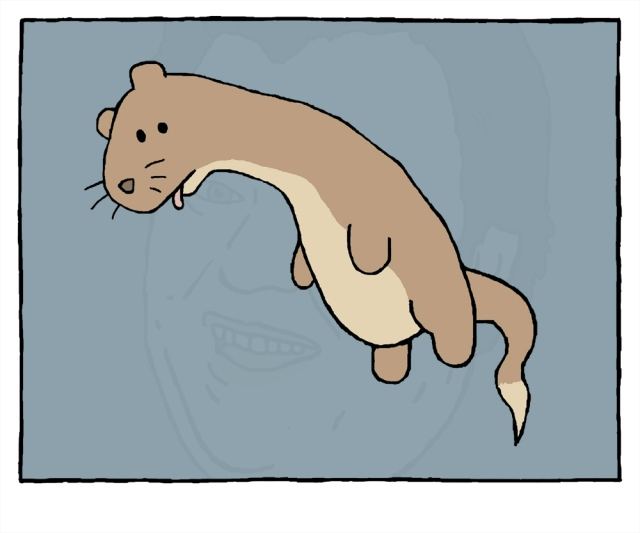 weasel copy